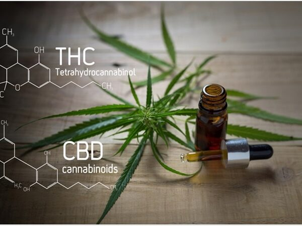 CBD vs. THC Products: What's the Difference Between the Two?
