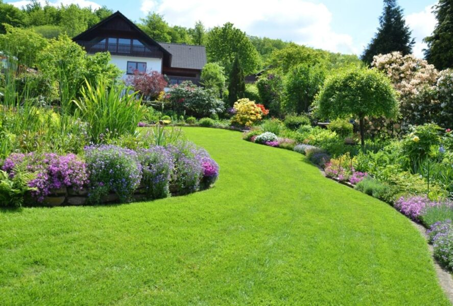 Backyard Bliss: 5 Landscaping Tips To Make Your Outdoor Space Savvy